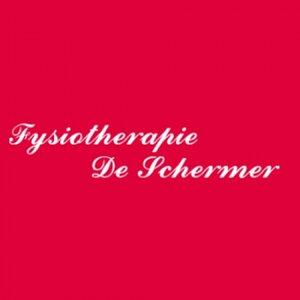 Praktijk voor Fysiotherapie De Schermer logo