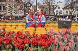 Jaarlijkse 'Tulpenkaasmarkt' zorgt voor kleurrijk spektakel op het Waagplein
